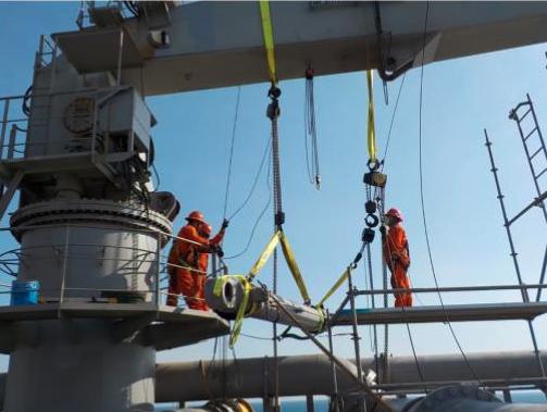 Ram seal replacement for hose handling crane